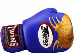 Перчатки для бокса TWINS SPECIAL FBGV-21