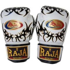 Перчатки для бокса Raja Boxing RFBGV-1-54-4
